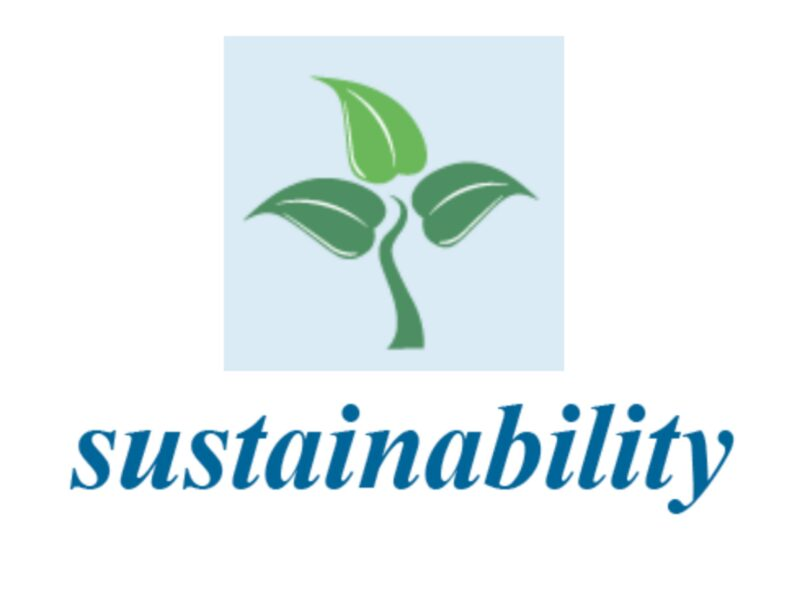 Special Issue of 'Sustainability' journal to be guest edited by GDI Hub